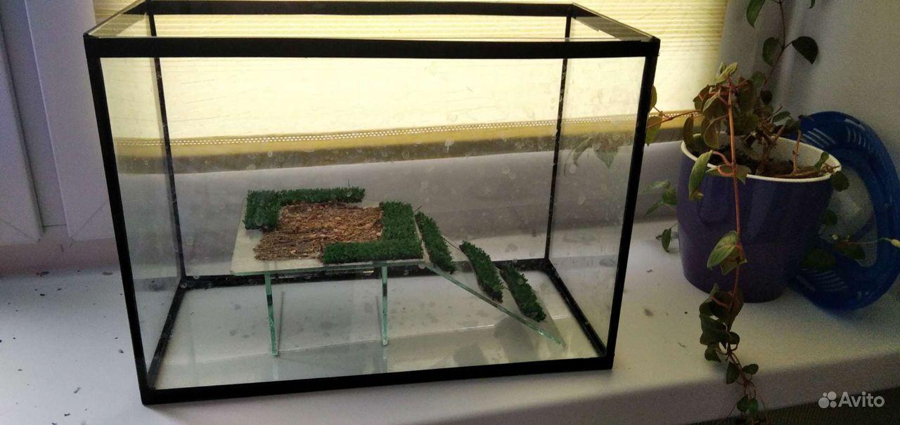 Аквариум для пресноводной черепахи купить на Зозу.ру - фотография № 1