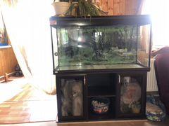 Аквариум 285 литров с тумбой