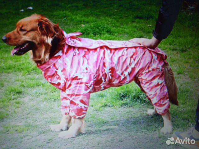 Дождевик для собак 89515899554 купить 6