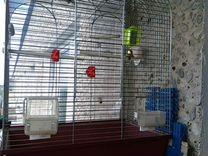 Клетка для попугаев. 45х28х61 высота