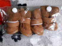 Ботиночки для собачки или кошки