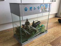 Аквариум для рыб цена за всё
