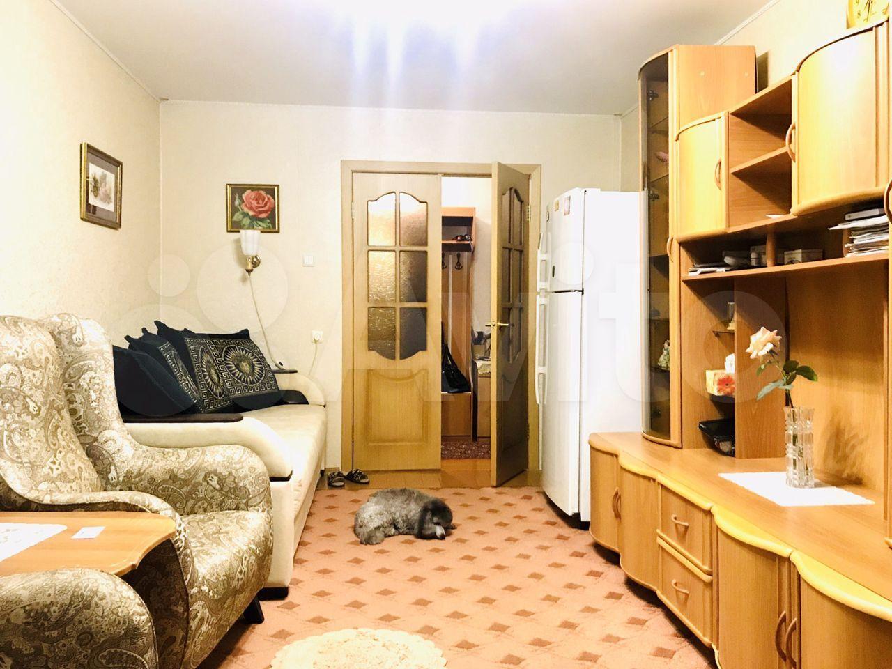 3-к квартира, 65.8 м², 6/9 эт.  89145446986 купить 3
